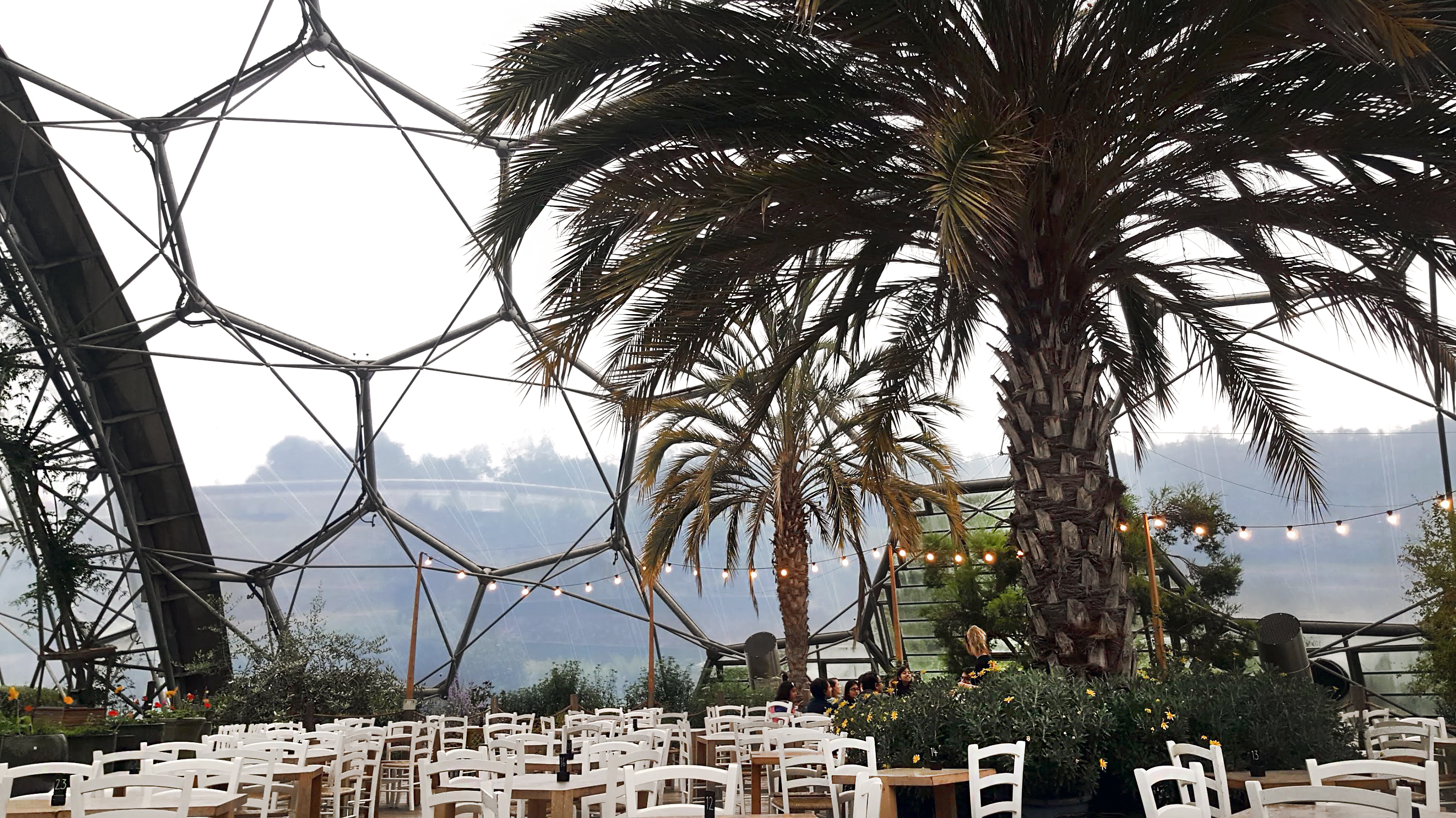 Dining Inside a Giant Terrarium: Med-Terrace Restaurant Experience at the Eden Project