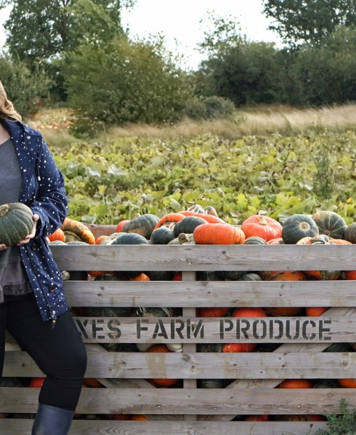 Exploring the BEST Essex Pumpkin Patch